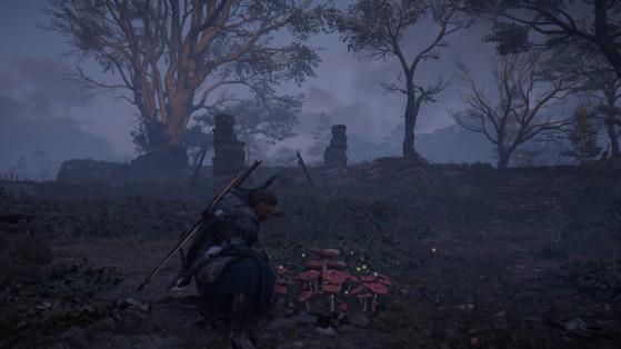 Assassin's Creed Valhalla: Solución a los misterios de las setas alucinógenas
