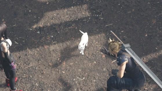 Guía Final Fantasy VII Remake, capítulo 3: encargo de los gatos perdidos