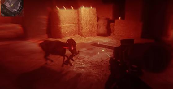 Modern Warfare: Cómo activar el secreto escondido de Livestock, ¡Cabras satánicas!
