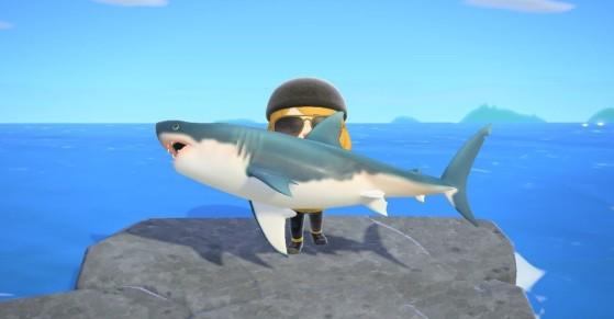 Animal Crossing New Horizons: Cómo pescar un tiburón