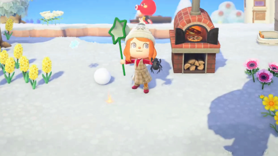 Animal Crossing New Horizons: Lista de bichos de febrero para el hemisferio norte y sur
