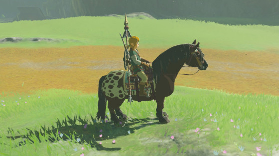 Guía de Zelda BotW: Caballos