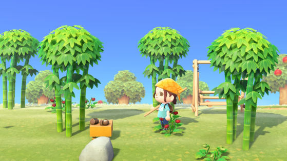 Animal Crossing New Horizons: ¿cómo conseguir bambú?