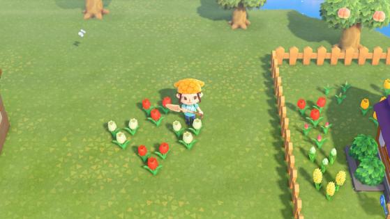 Ejemplo de polinización cruzada - Animal Crossing: New Horizons