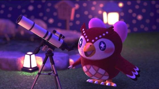 Animal Crossing New Horizons: Estela y su lista de objetos