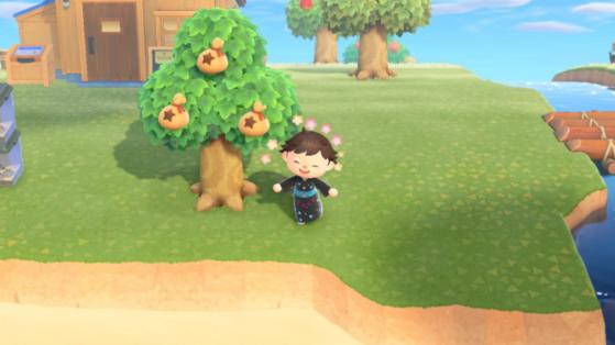 Animal Crossing New Horizons: ¿cómo hacer un árbol de bayas?