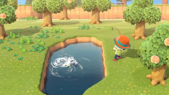 Animal Crossing New Horizons: Lista de peces de junio en los hemisferios norte y sur