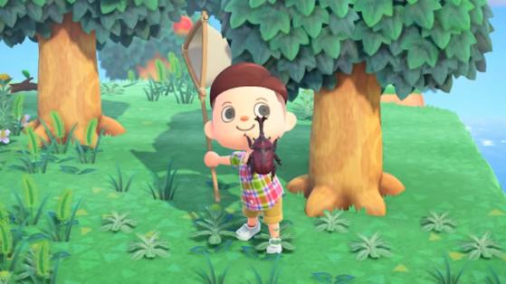 Animal Crossing New Horizons: ¡los bichos más raros y caros del juego!